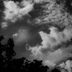 June Skies 002