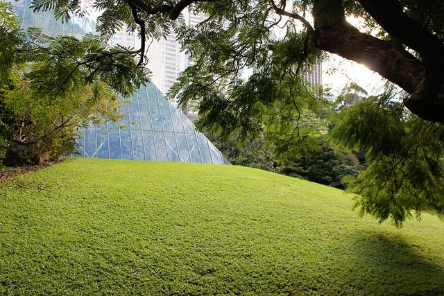 Botanics pyramid