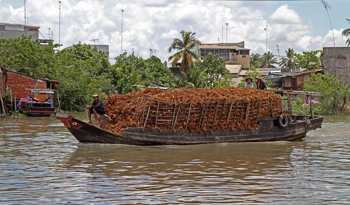 Panza cocos supongo