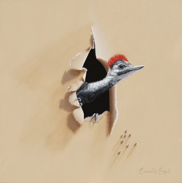 Pileated Woodpecker, A Backyard Bird Oil Painting by ...