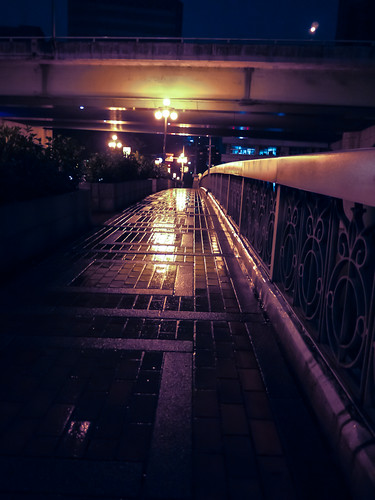 Hokonagashi-bashi in the rain by hyossie
