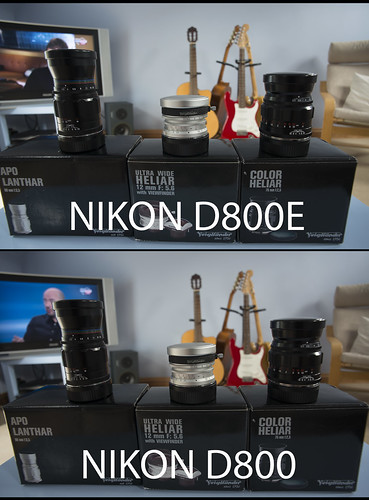 NIKON D800E / D800 Comparison Voigtlander 20mm f/3.5