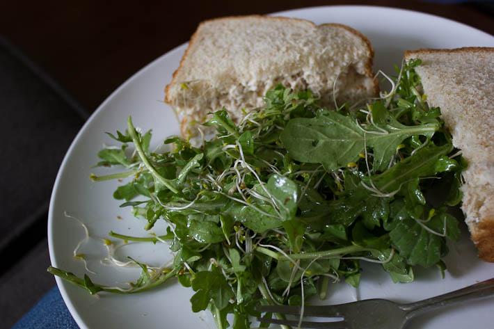 Tuna Sandwich and Salad.