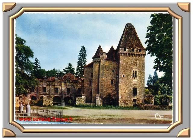 Le Château de la Marthonye (13è siècle)-70-150_000