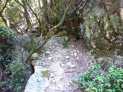 Le vieux chemin en RD en aval de la brèche du Carciara : le départ depuis la brèche