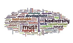 Wordled Jeju Declaration from the September 2012 #iucncongress
