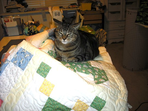 miss kitty approves another quilt