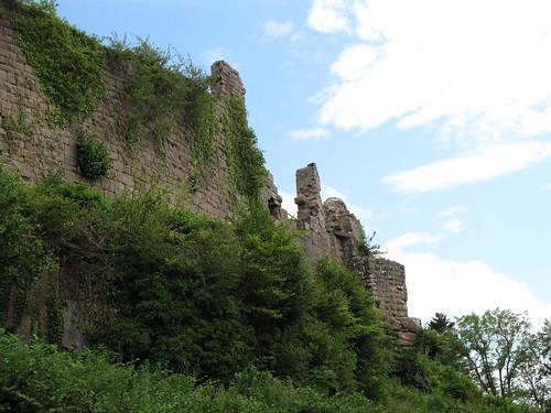 ruine du chateaux frankenbourg 056