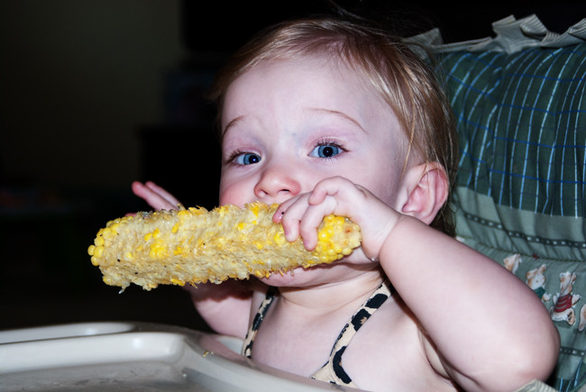 Jax eating corn