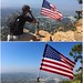I plead of USA flag by daveynin