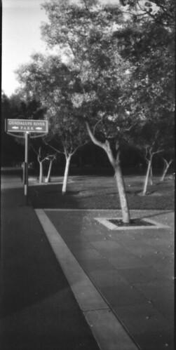 San Jose_0011