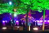 City Nord Light Festival