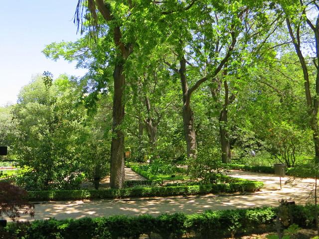 Real Jardin Botanico-001  Flickr - Photo Sharing!
