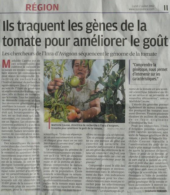 Ils traquent les gènes de la tomate pour améliorer le goût, article de La Provence