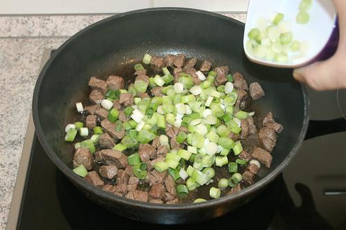21 - Frühlingszwiebeln hinzufügen / Add spring onions
