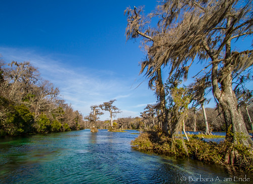 park river moss state spanish springs wakulla