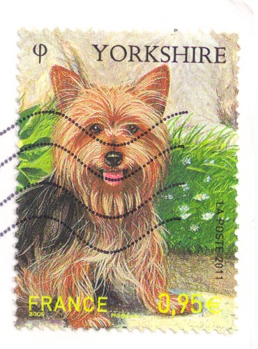 Yourkshire Terrier France Stamp