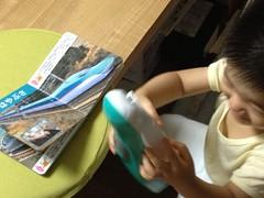 はやぶさ弁当の箱を気に入るとらちゃん (2012/9/23)