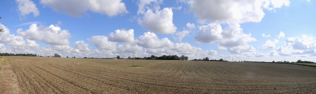Big field Roydon to Sawbridgeworth