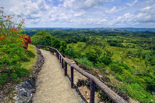 wood blue sky tree green nature clouds landscape nikon view path philippines vert bleu ciel arbres bohol nuages paysage carmen vue hdr chemin bois batuan 9xp d700 1424mm 9raw visayascentrales