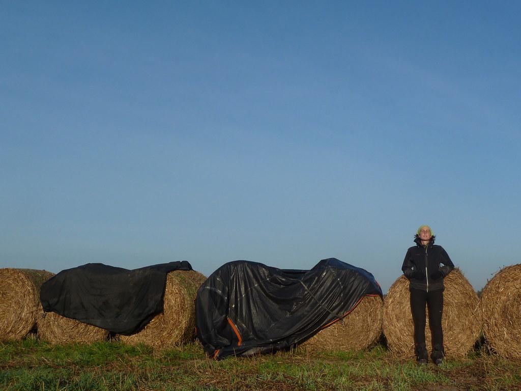 Assecant la tenda a Rogozno (Polònia)