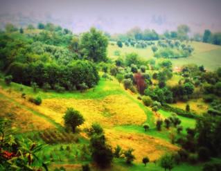 Landscape  [EXPLORED]