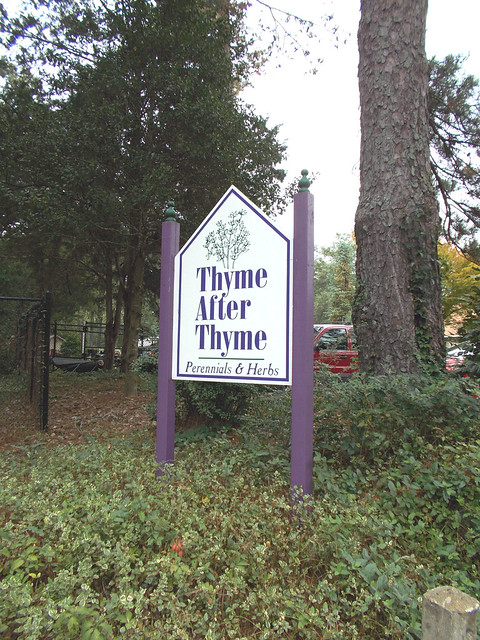 THYME 7335