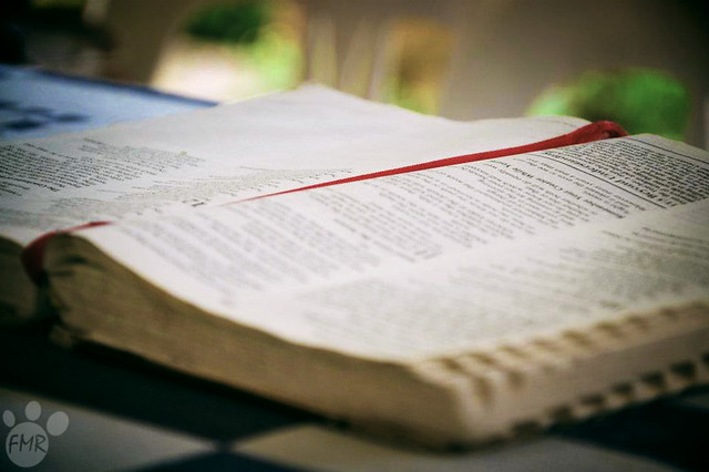 Read your Bible from Flickr via Wylio