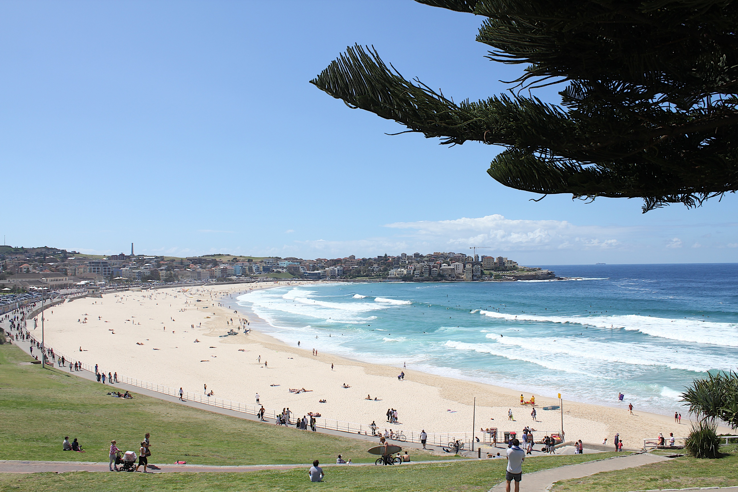 Visit Bondi Beach - Australia's most famous surf beach