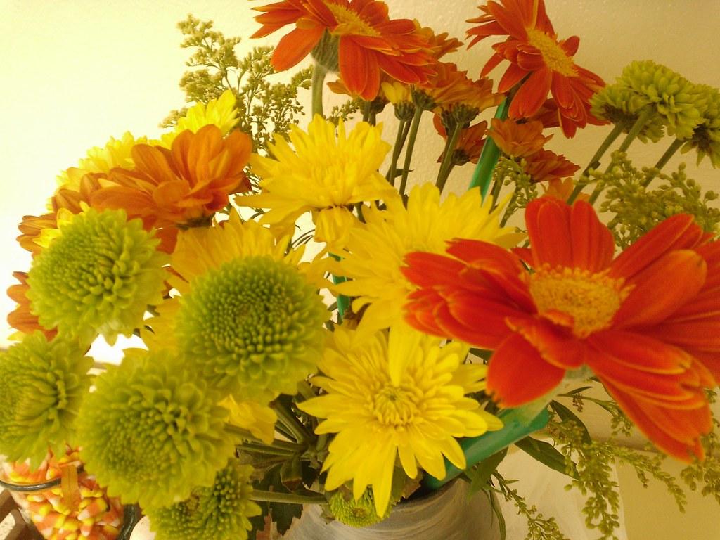 InstaCam_2012-10-03_11-31-28-AM