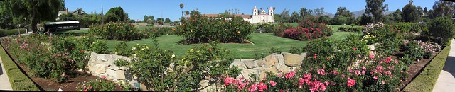 IMG_0414_6 120820 Santa Barbara Postel Mission rose garden ICE rm stitch99
