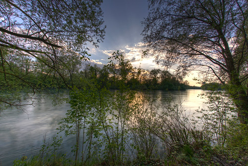 trees sunset tree water forest river landscape schweiz switzerland bush wasser sonnenuntergang zürich fluss 16mm landschaft wald bäume baum hdr reuss kanton kantonzürich 7xp cantonofzurich ottenbach d800e