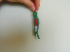 Tiny Quetzal