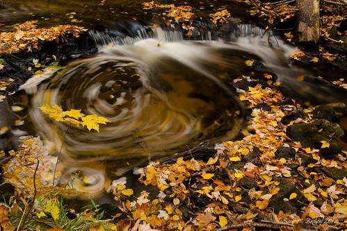 Chapel Falls Whirlpool