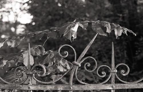 Fragment of a fence, Narva-Jõesuu by KaraNagai
