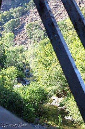 niles canyon railroad 046