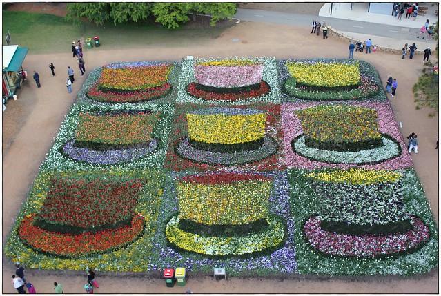 Flower arrangement as hats - Floriade 2012, Canberra