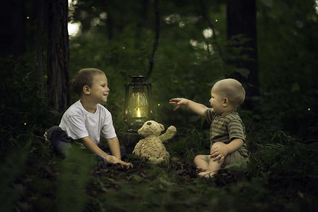 Brothers Catching Fireflies