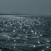Ocean of Teardrops