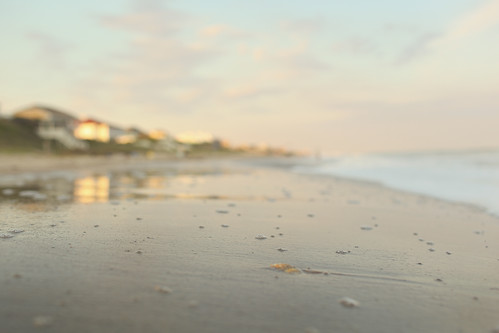 beach cottage blur