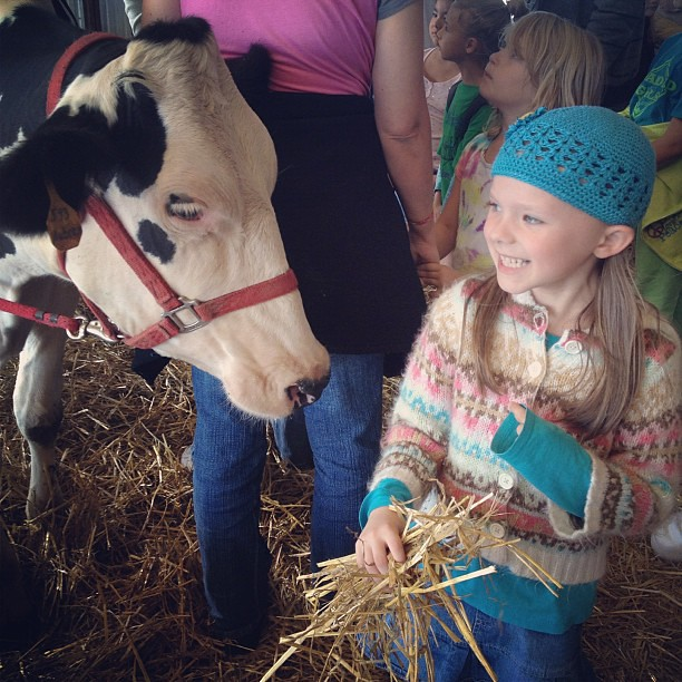 Izabel and a mama #cow! #shattodairyfarm