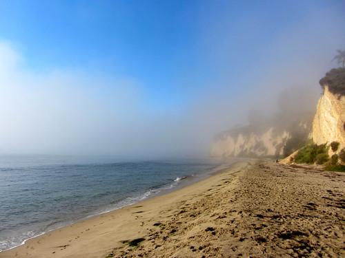 morning fog retreats