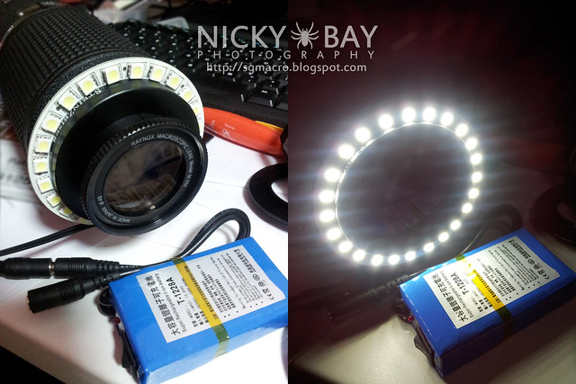 LED Ring Focusing Light