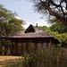 Gojo Room, Bishangari Lodge (Dani Free)
