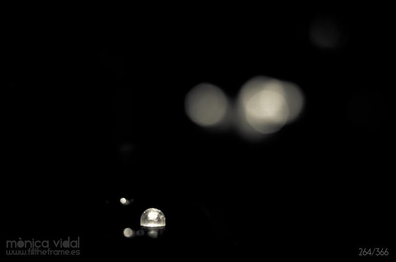 264/366. Barcelona, 21:05. Luciérnagas minimalistas.