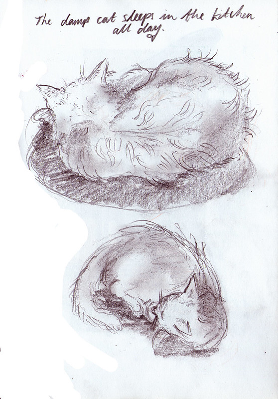 dracula sleeps