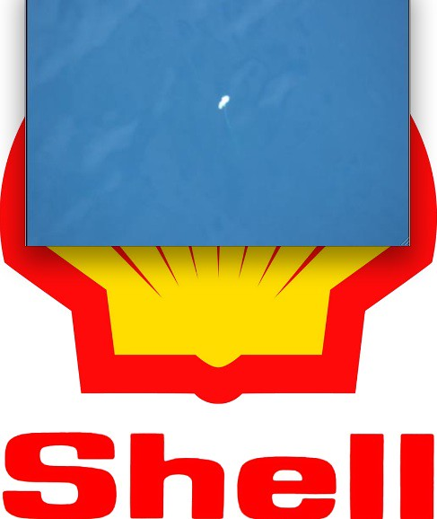 Dead Polar Bear in Chukchi Sea on SHELL logo