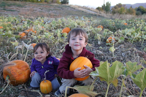 The two kids in the pumpkins 2