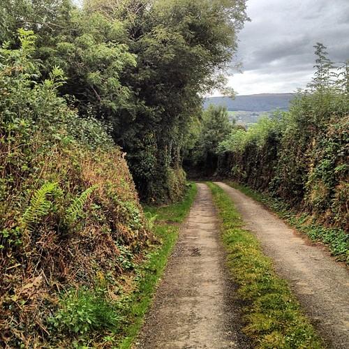 This is a 2-way street btw #touring #biking #ireland