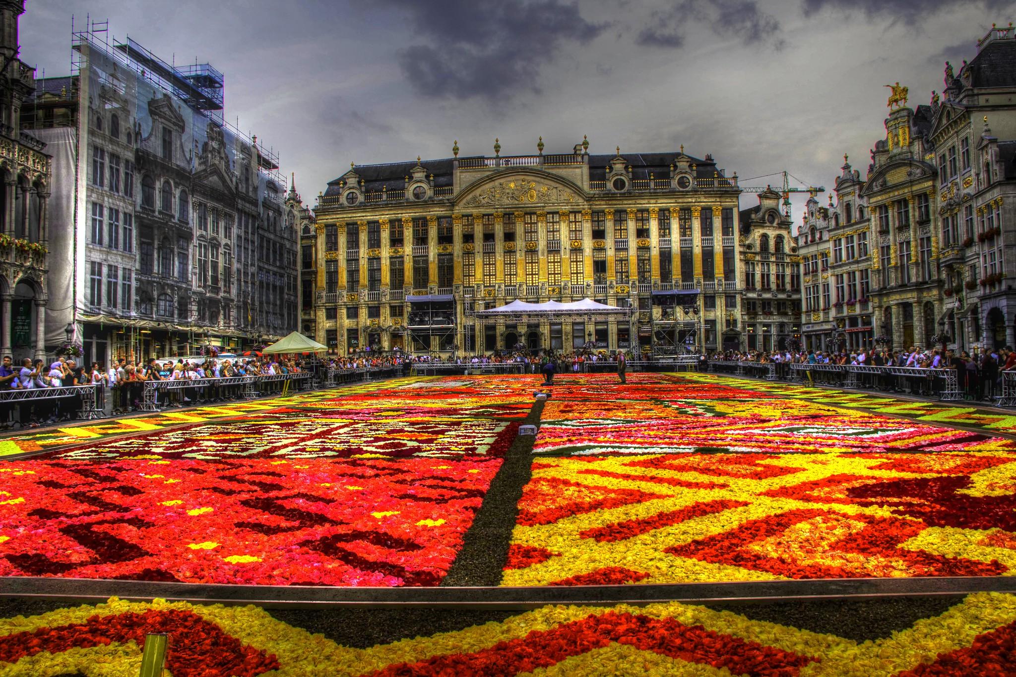 belgique bruxelles grand place tapis de fleurs 2012 flickr photo sharing. Black Bedroom Furniture Sets. Home Design Ideas